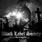 Black Label Society Ain't No Sunshine