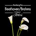 Bamberg Trio Beethoven/Brahms: Trios