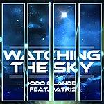 Dodo Watching The Sky