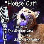 Lucky House Cat (Feat. Joyce Tha Voice) - Single