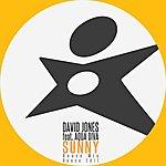 David Jones Sunny (Feat. Aqua Diva) [House Mix]