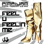 Pimp Feel U Feelin' Me