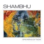 Shambhu Dreaming Of Now