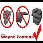 Wayne Fontana Something Inside So Strong
