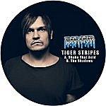 Tiger Stripes Shake That Acid / The Shadows