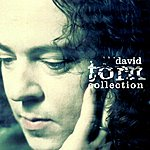 David Torn The David Torn Collection