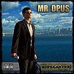 Misolanius Mr. Opus