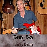 Larry Davis Gray Sky
