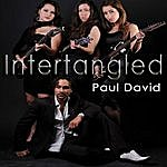 Paul David Intertangled