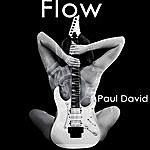 Paul David Flow