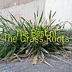 The Grass Roots The Best Of The Grass Roots