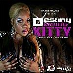 Destiny My Little Kitty