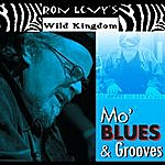 Ron Levy Mo' Blues & Grooves