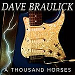 Dave Braulick A Thousand Horses