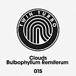 Clouds Twin Turbo 015 - Bulbophyllum Remiferum