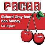 Richard Grey No Deputy