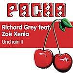 Richard Grey Unchain It