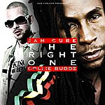 Jah Cure The Right One - Single
