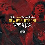 SD New World Order (Remix) [Feat. Danny Brown]