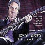Tony Grey Elevation