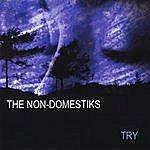 The Non-Domestiks Try