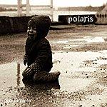 Polaris Tigre De Papier