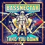 Bassnectar Take You Down
