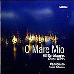 Tauno Satomaa Kortekangas: Choral Works