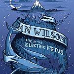 Dan Wilson Live At Electric Fetus