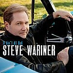 Steve Wariner It Ain't All Bad