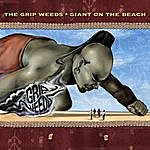 The Grip Weeds Giant On The Beach