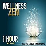 Double Zero Wellness Zen (1 Hour No Stop)