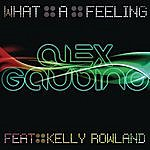Alex Gaudino What A Feeling (Part 1)