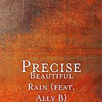 Precise Beautiful Rain (Feat. Ally B)