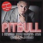 Pitbull I Know You Want Me (Calle Ocho)