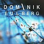 Dominik Eulberg Backslash