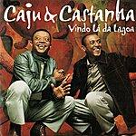 Caju & Castanha Vindo Lá Da Lagoa