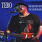 Tebo The Gteatest Hits You Never Heard
