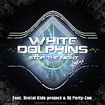 White Dolphins Stop The Night