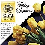 Royal Philharmonic Orchestra Frühlings Impressionen