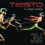 Tiësto Feel It In My Bones