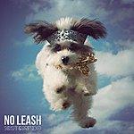 Scott No Leash