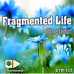 Michael Lambart Fragmented Life