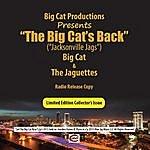 Big Cat The Big Cat's Back (Jacksonville Jags)