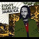 Ziggy Marley Ziggy Marley In Jamaica