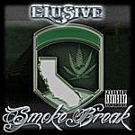Elusive Smoke Break