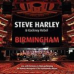 Steve Harley Birmingham (Live With Orchestra & Choir)