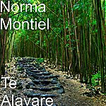 Norma Montiel Te Alavare