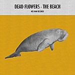 Dead Flowers The Beach