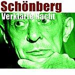 RTBF Symphony Orchestra Schoenberg: Verklärte Nacht